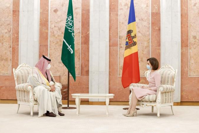 Ambasadorul Regatului Arabiei Saudite